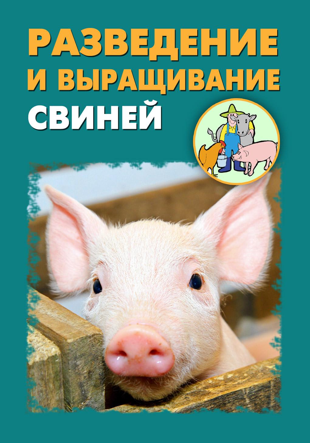 Книга Разведение и выращивание свиней