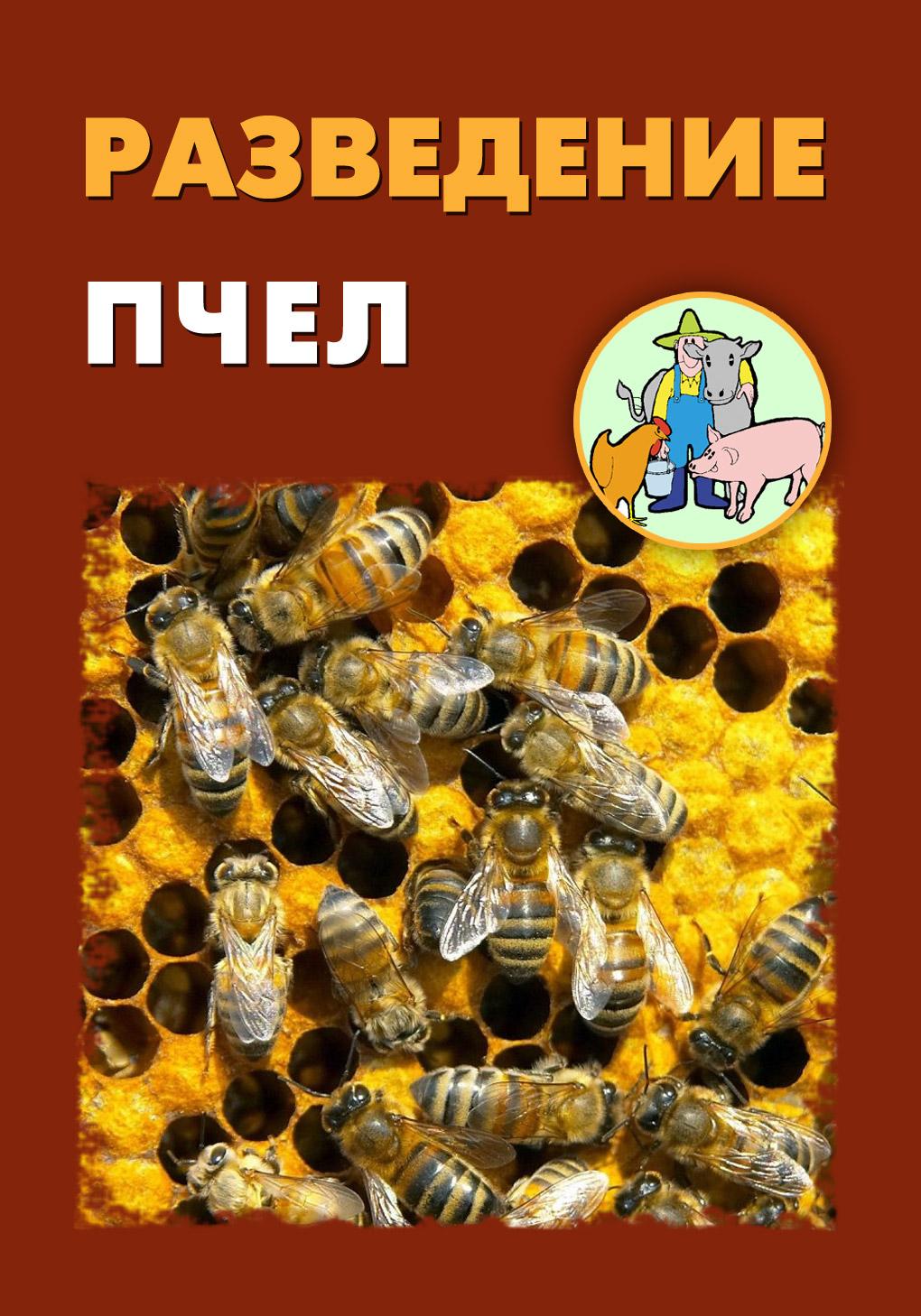 Книга Разведение пчел