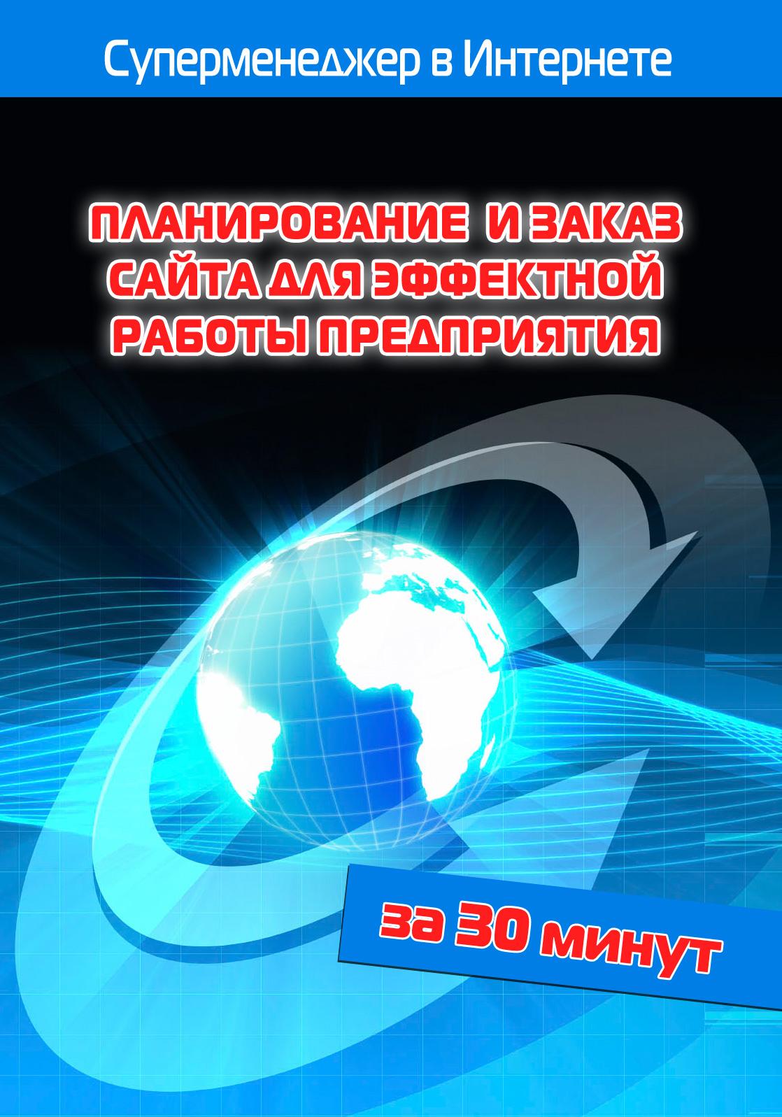 Книга Планирование и заказ сайта для эффектной работы предприятия