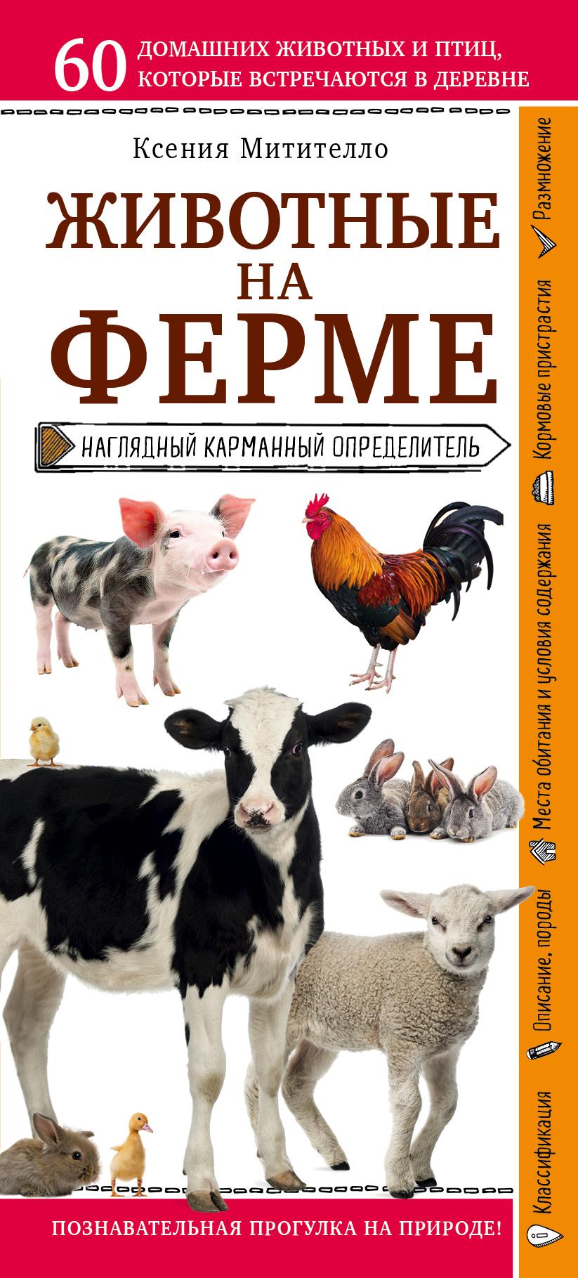 Купить книгу Животные фермы. Наглядный карманный определитель, автора Ксении Митителло