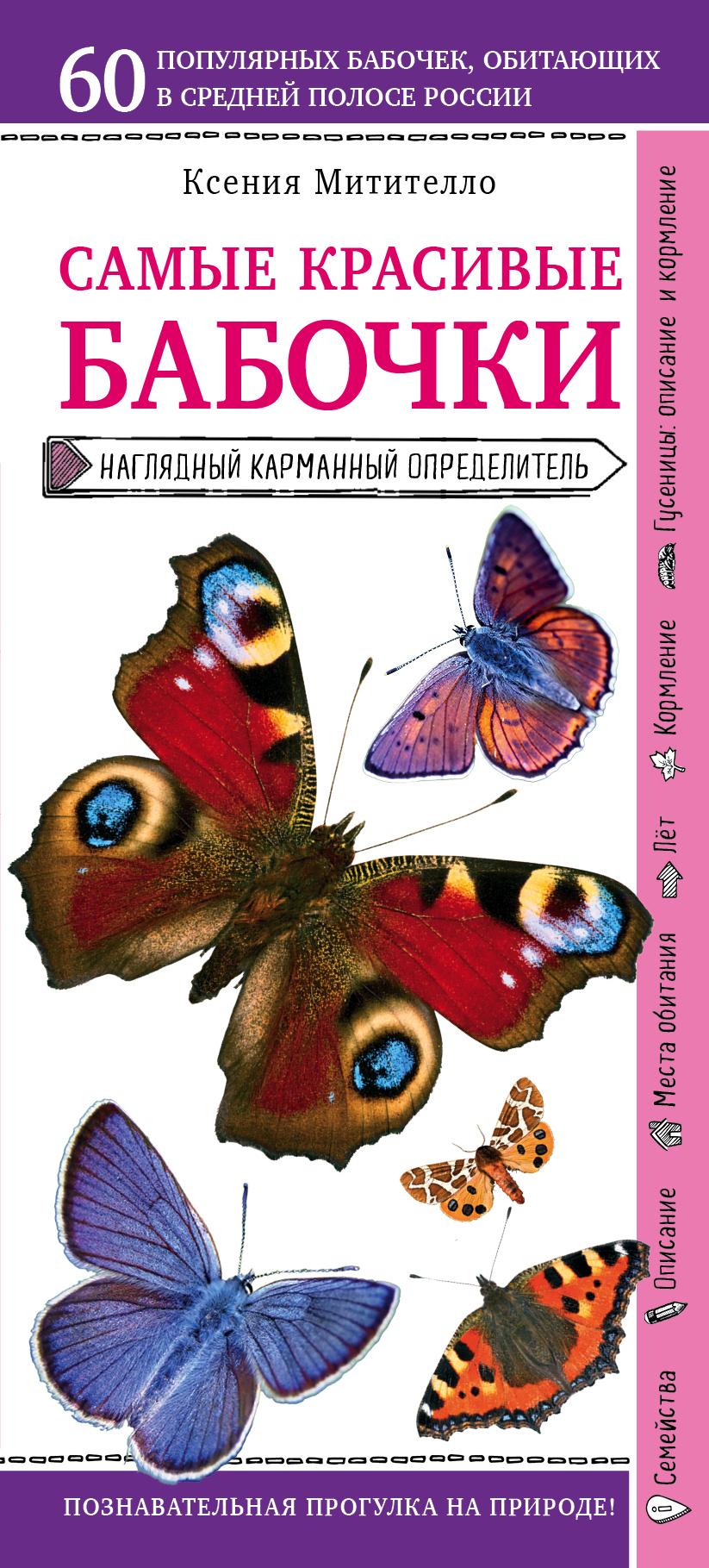 Купить книгу Бабочки. Наглядный карманный определитель, автора Ксении Митителло