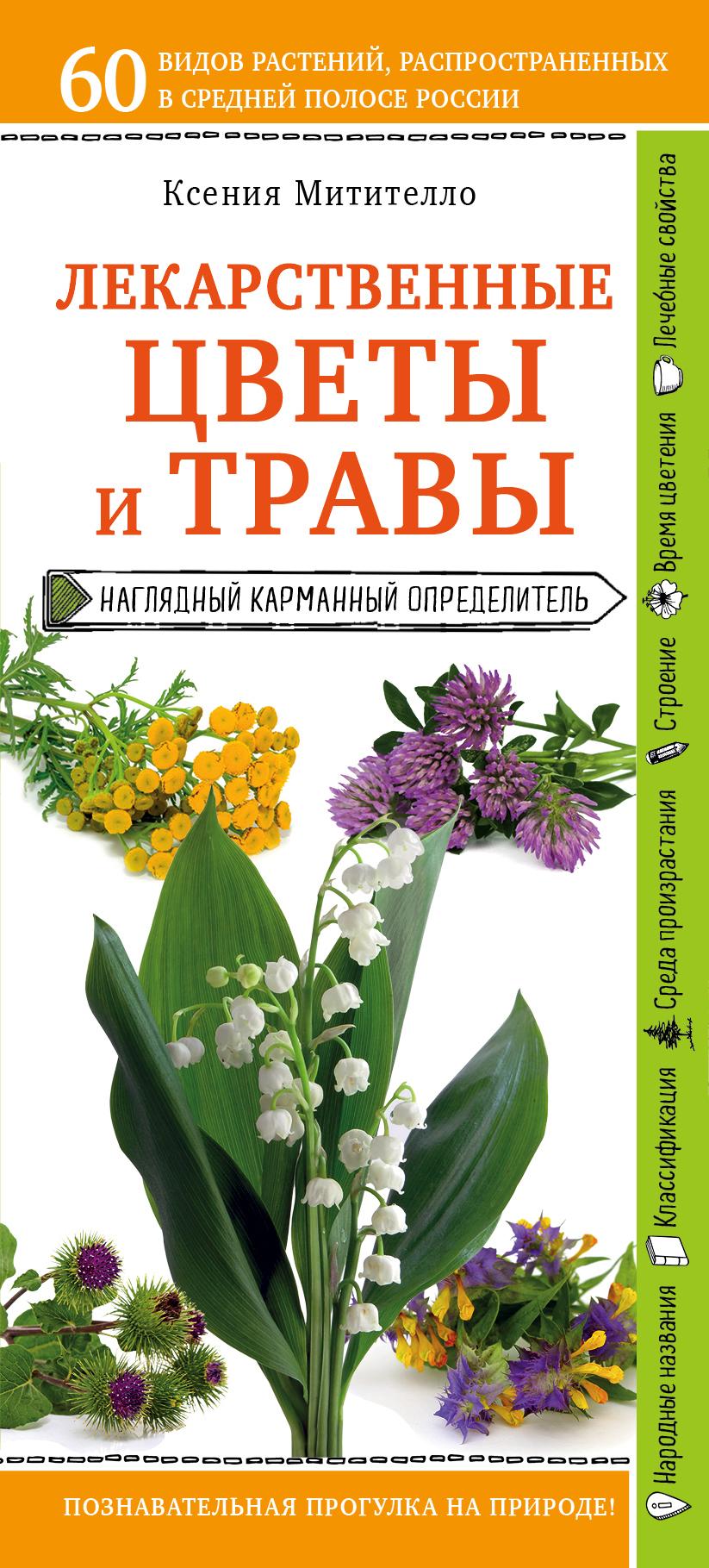 Купить книгу Лекарственные растения и травы. Определитель трав русских лесов и полей, автора Ксении Митителло