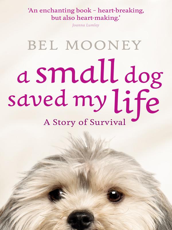 Купить книгу A Small Dog Saved My Life, автора Bel  Mooney