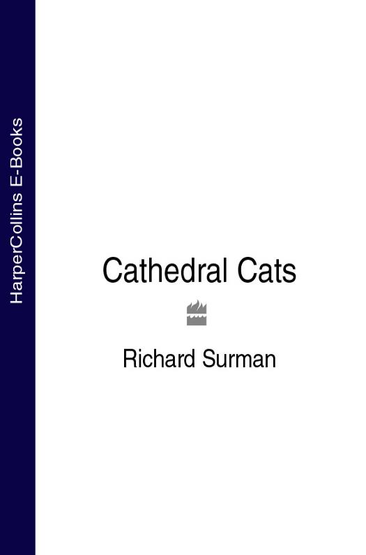 Купить книгу Cathedral Cats, автора Richard  Surman