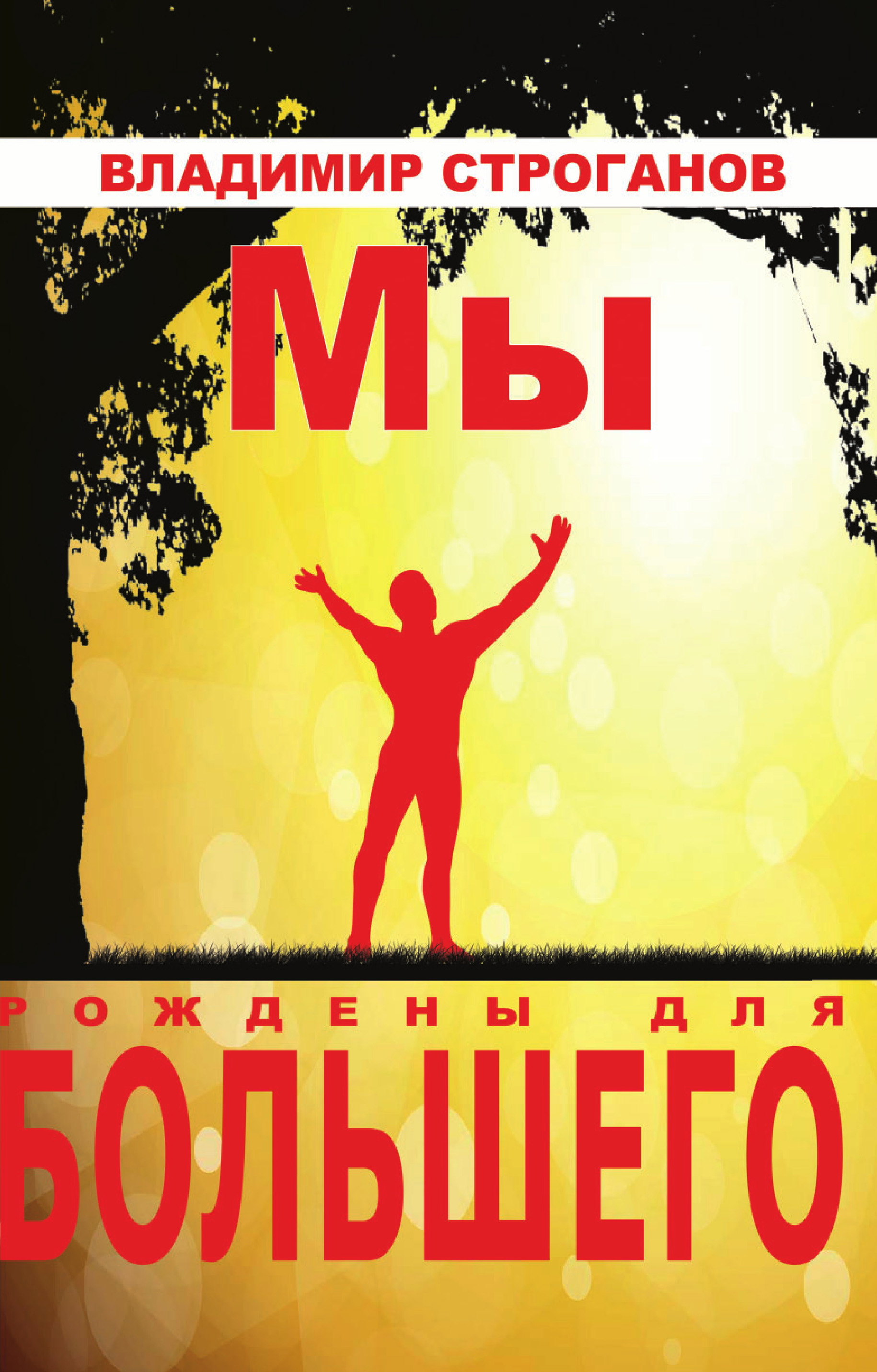 Купить книгу Мы рождены для большего, автора Владимира Строганова