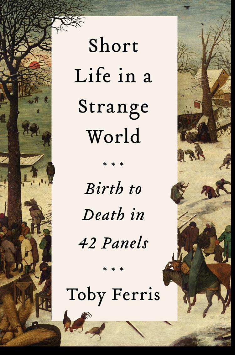Купить книгу Short Life in a Strange World: Birth to Death in 42 Panels, автора