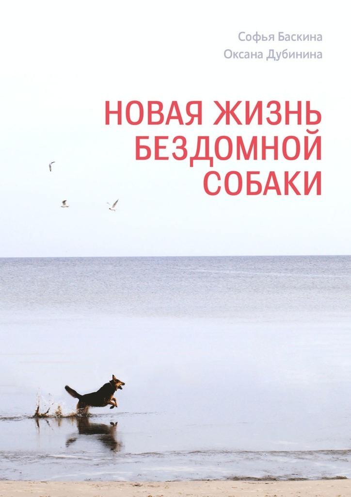 Новая жизнь бездомной собаки