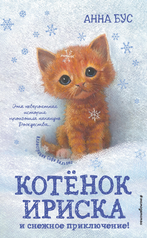 Котёнок Ириска и снежное приключение!