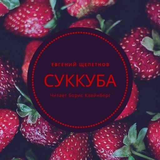 Купить книгу Суккуба, автора Евгения Щепетнова