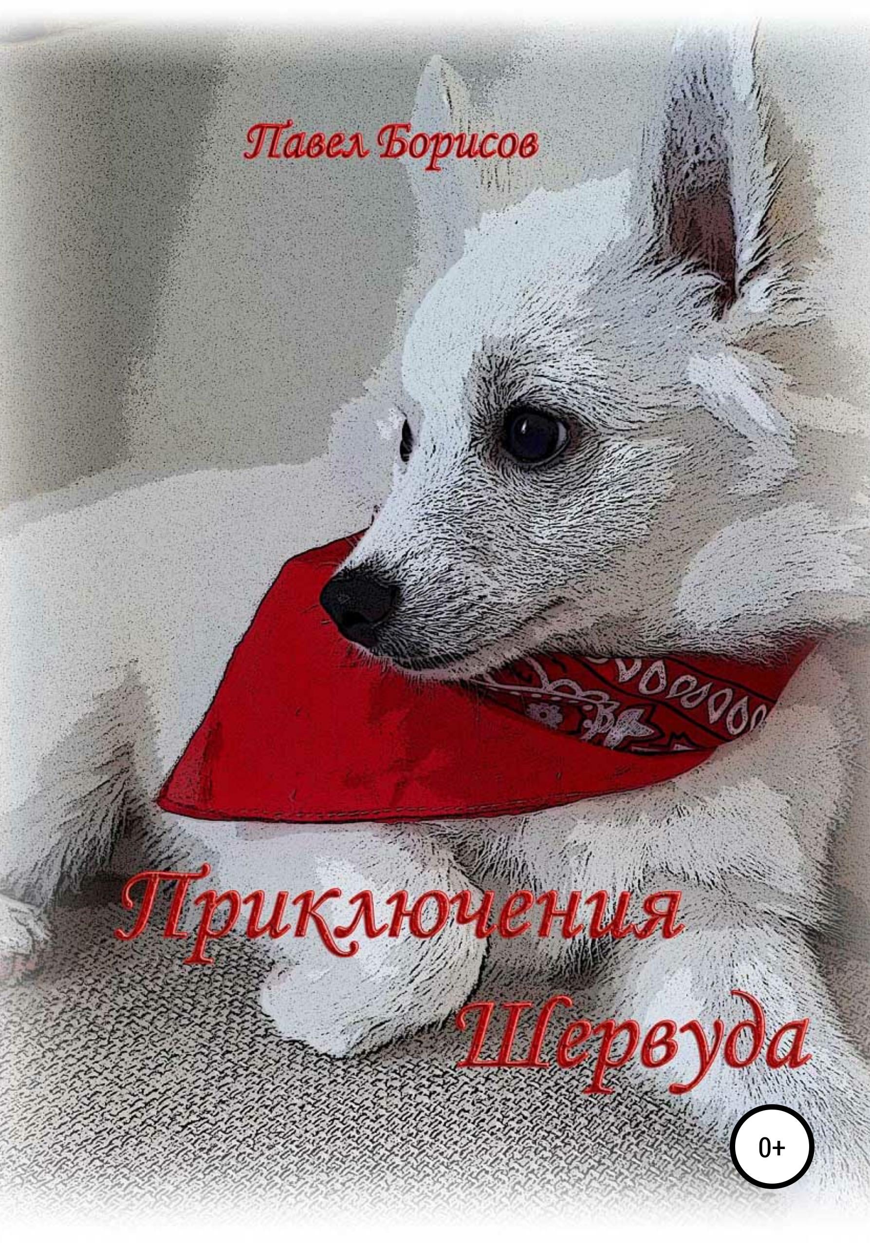 Купить книгу Приключения Шервуда, автора Павла Владимировича Борисова
