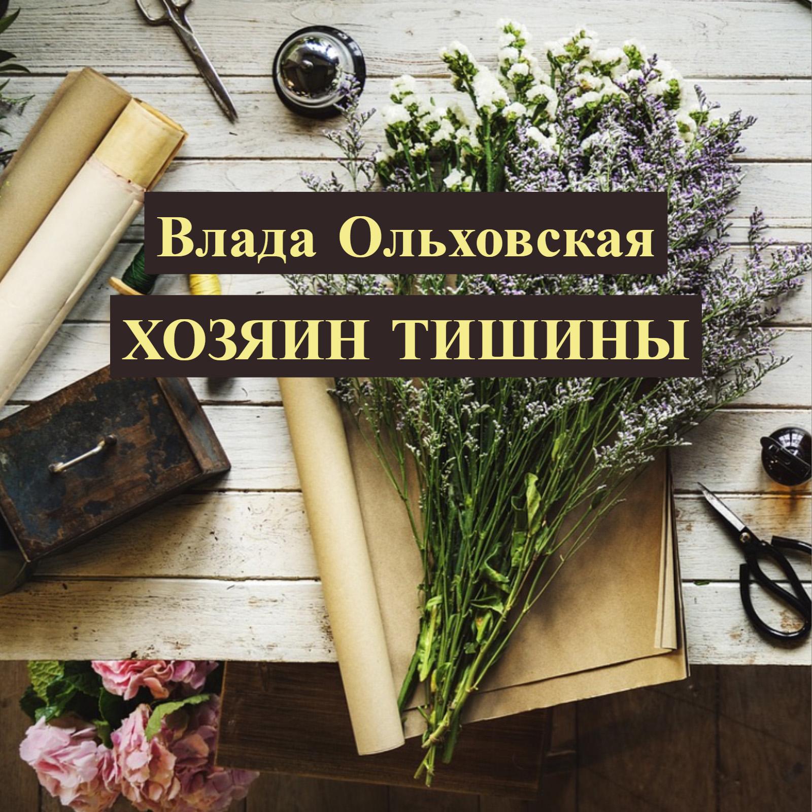 Купить книгу Хозяин тишины, автора Влады Ольховской