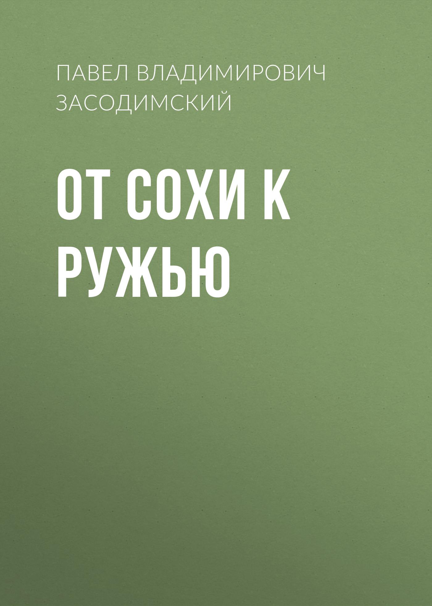 Купить книгу От сохи к ружью, автора Павла Владимировича Засодимского