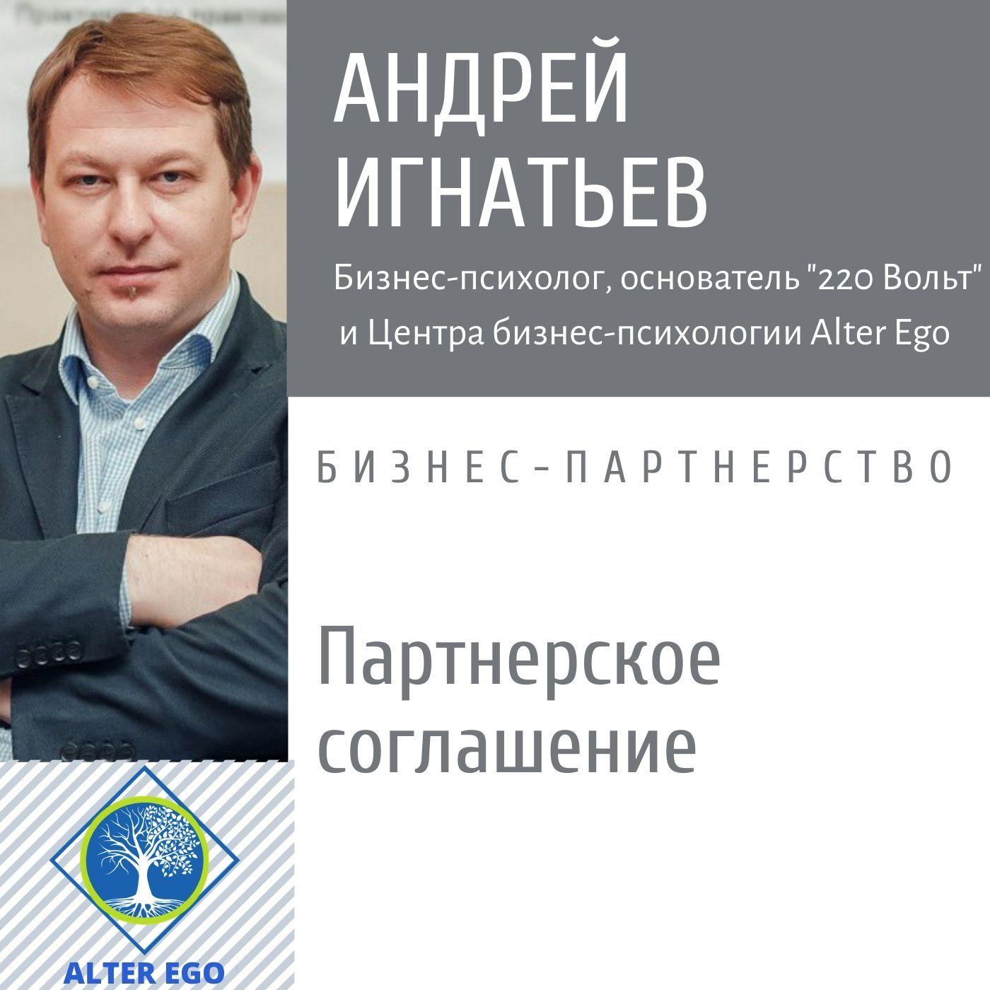 Купить книгу Почему всем бизнес-партнерам нужно Партнерское Соглашение, автора Андрея Игнатьева