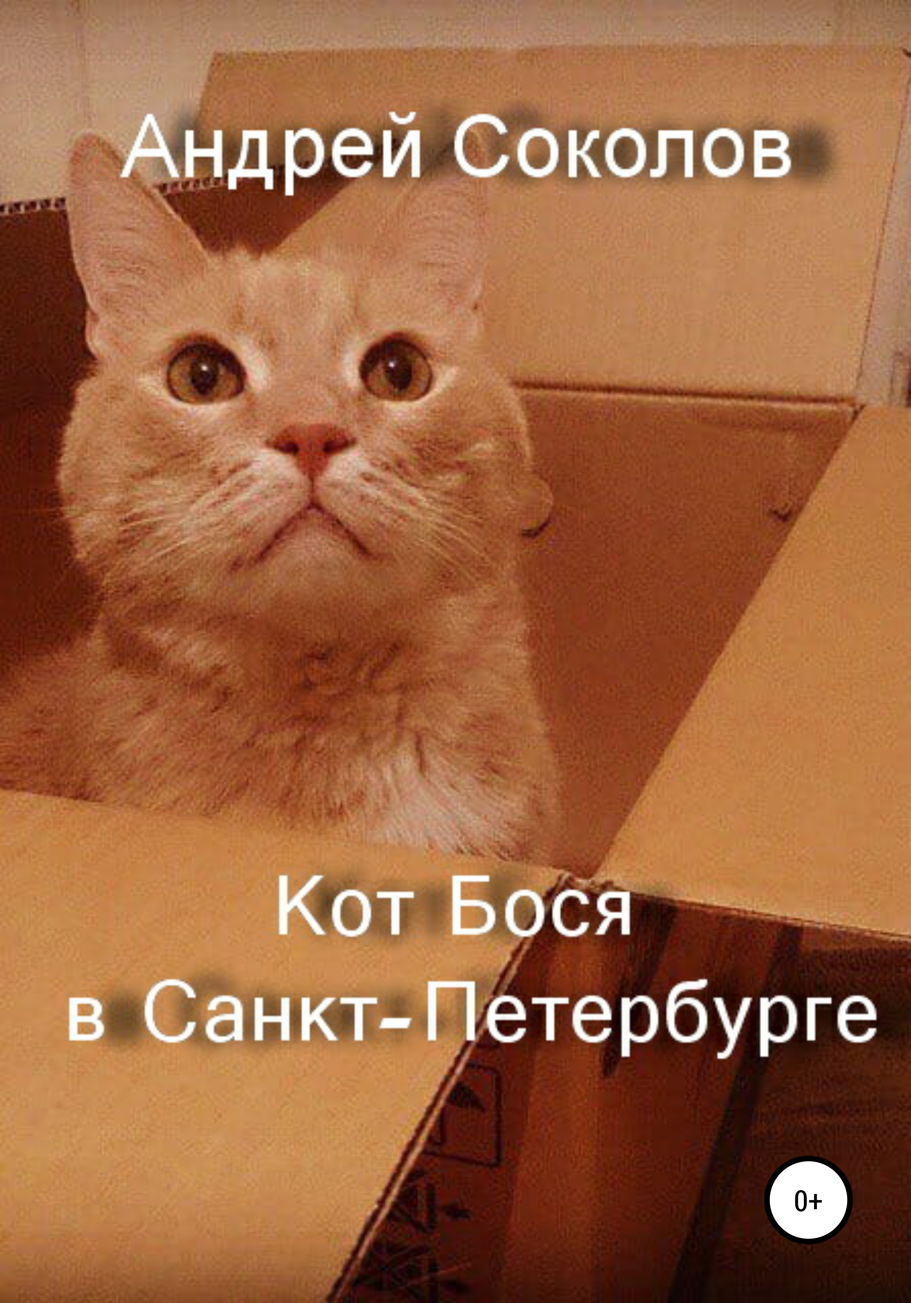 Кот Бося в Санкт-Петербурге
