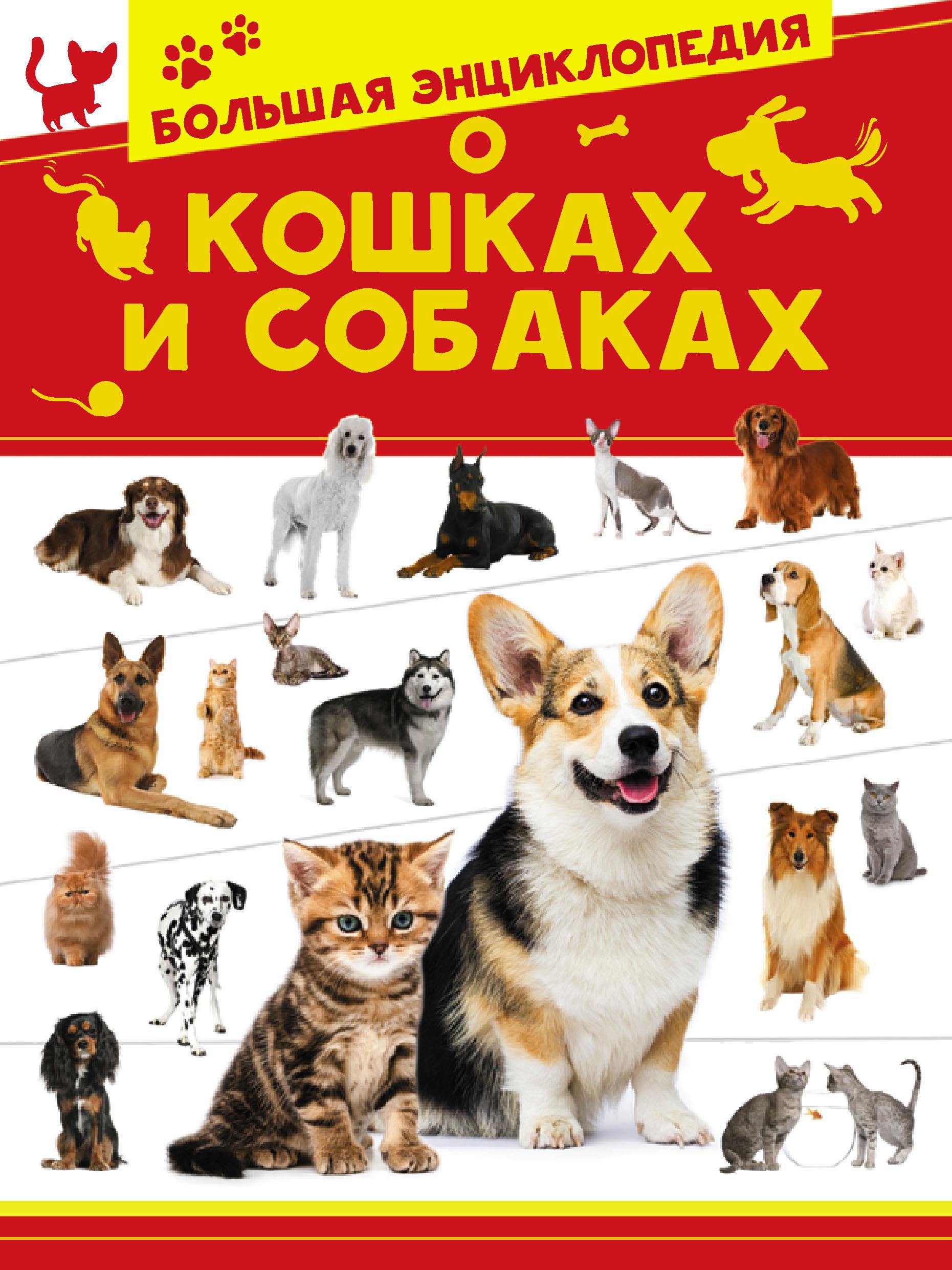 Купить книгу Большая энциклопедия о кошках и собаках, автора Анны Спектор