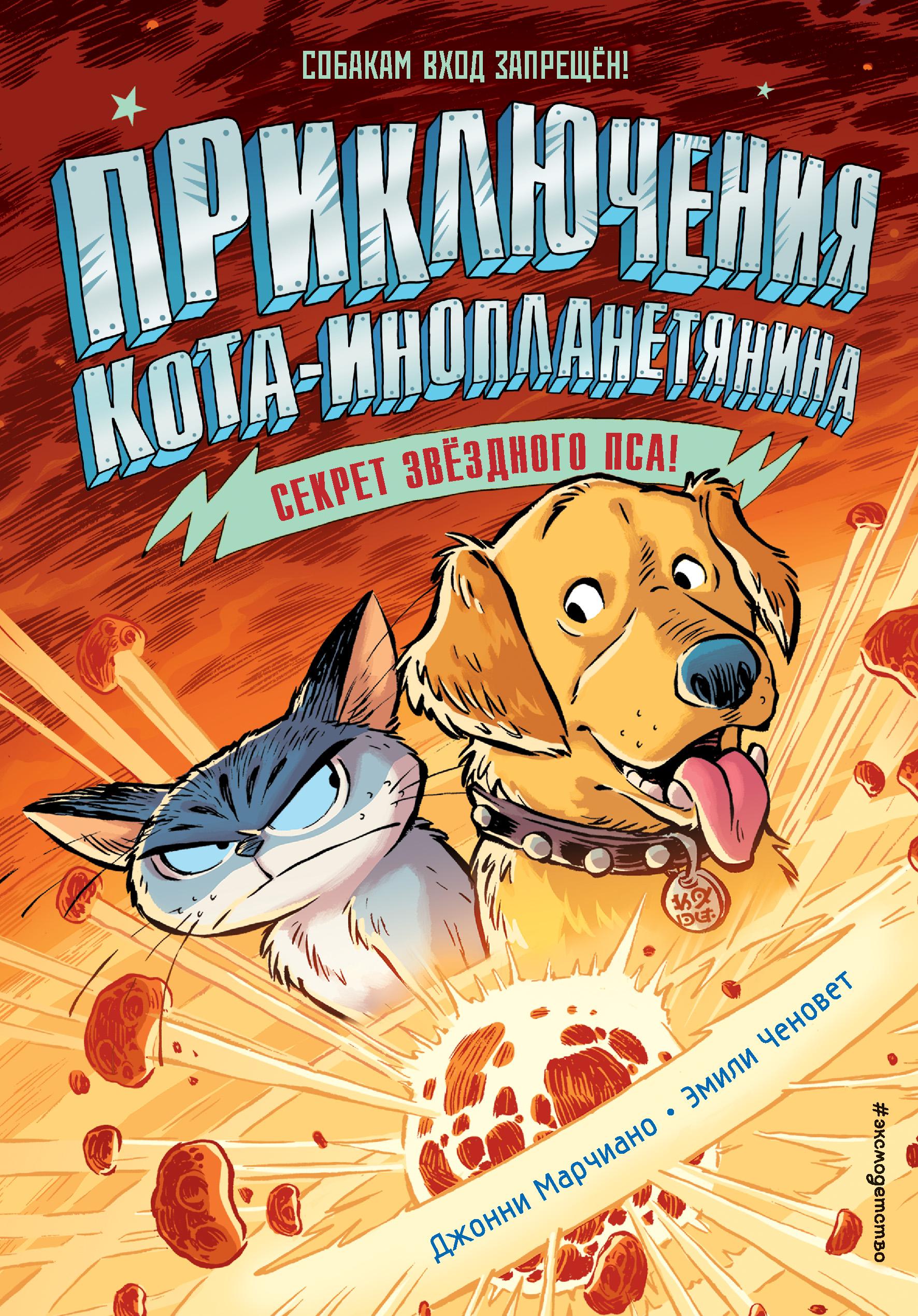 Купить книгу Секрет звёздного пса, автора Джонни Марчиано