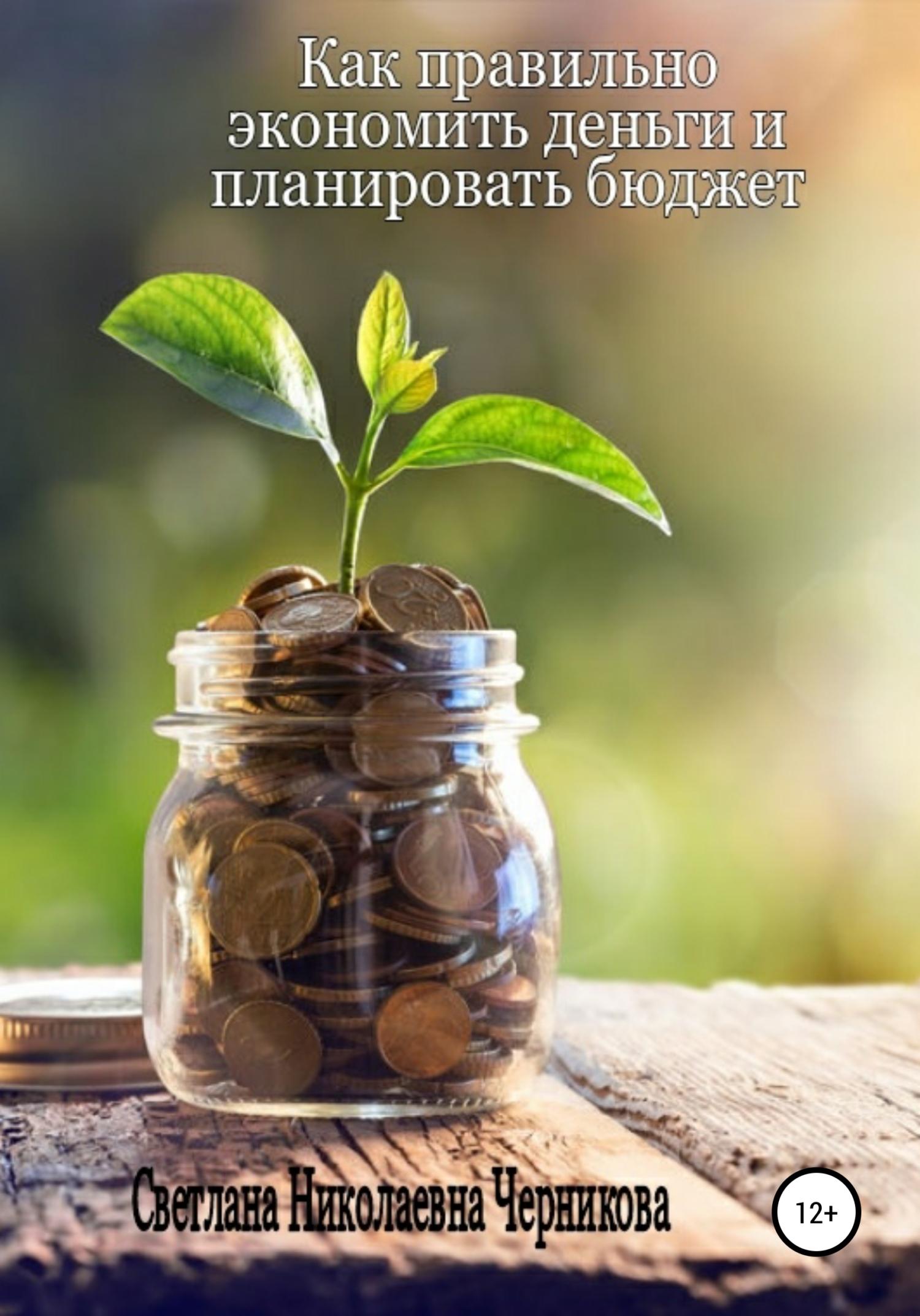 Купить книгу Как правильно экономить деньги и планировать бюджет, автора Светланы Николаевны Черниковой