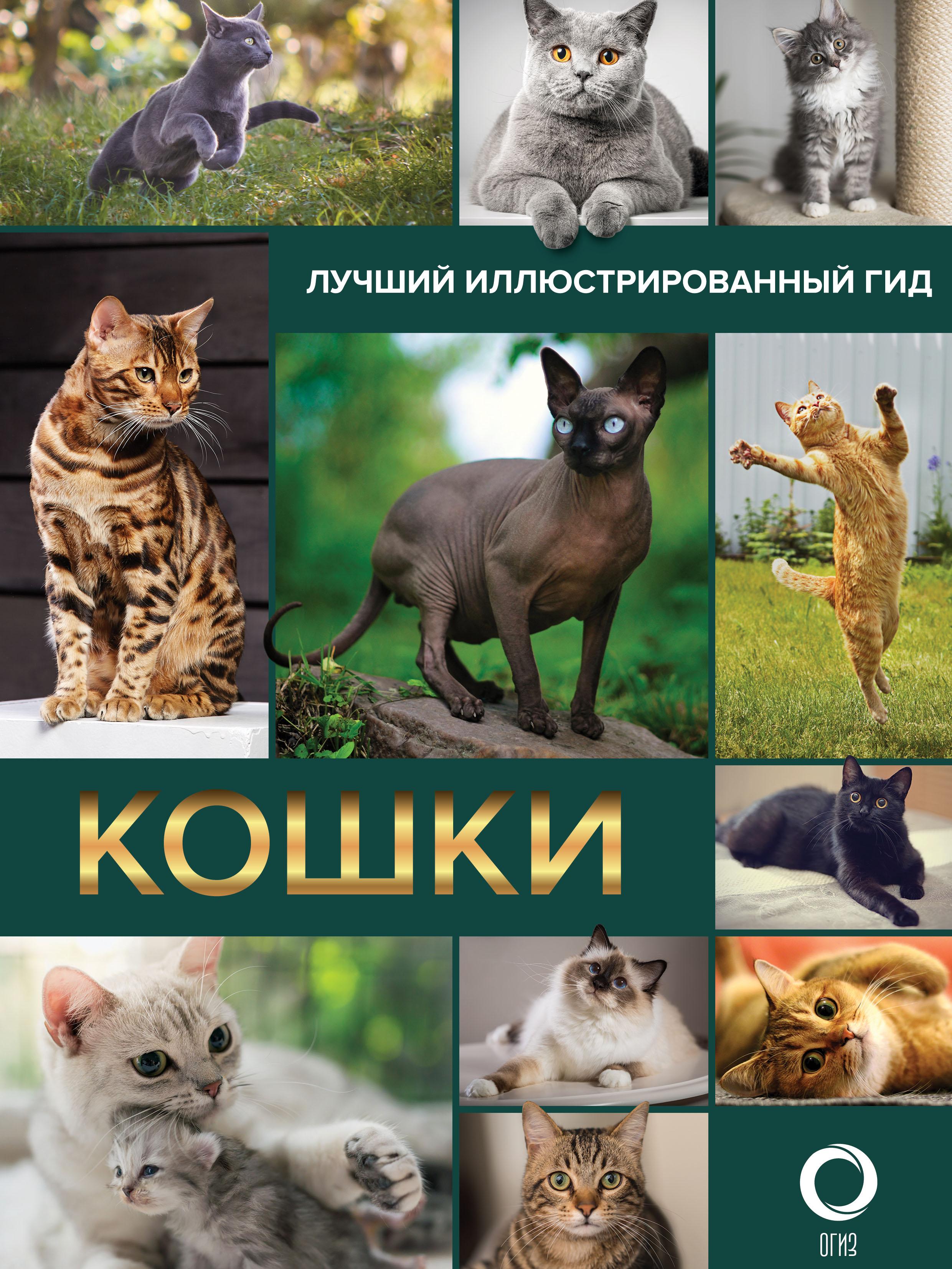Купить книгу Кошки, автора Н. Н. Непомнящего