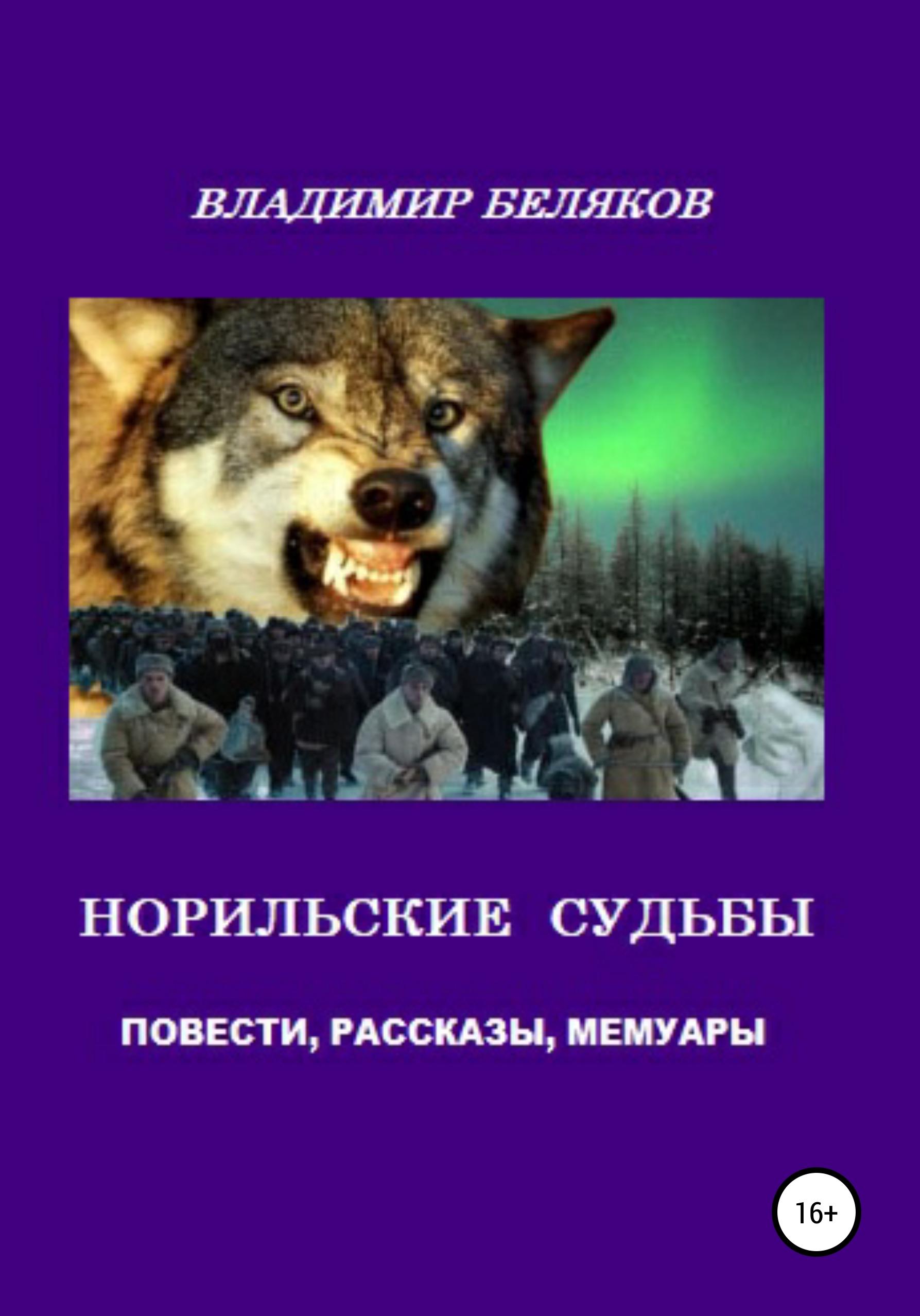 Владимир Беляков - Норильские судьбы