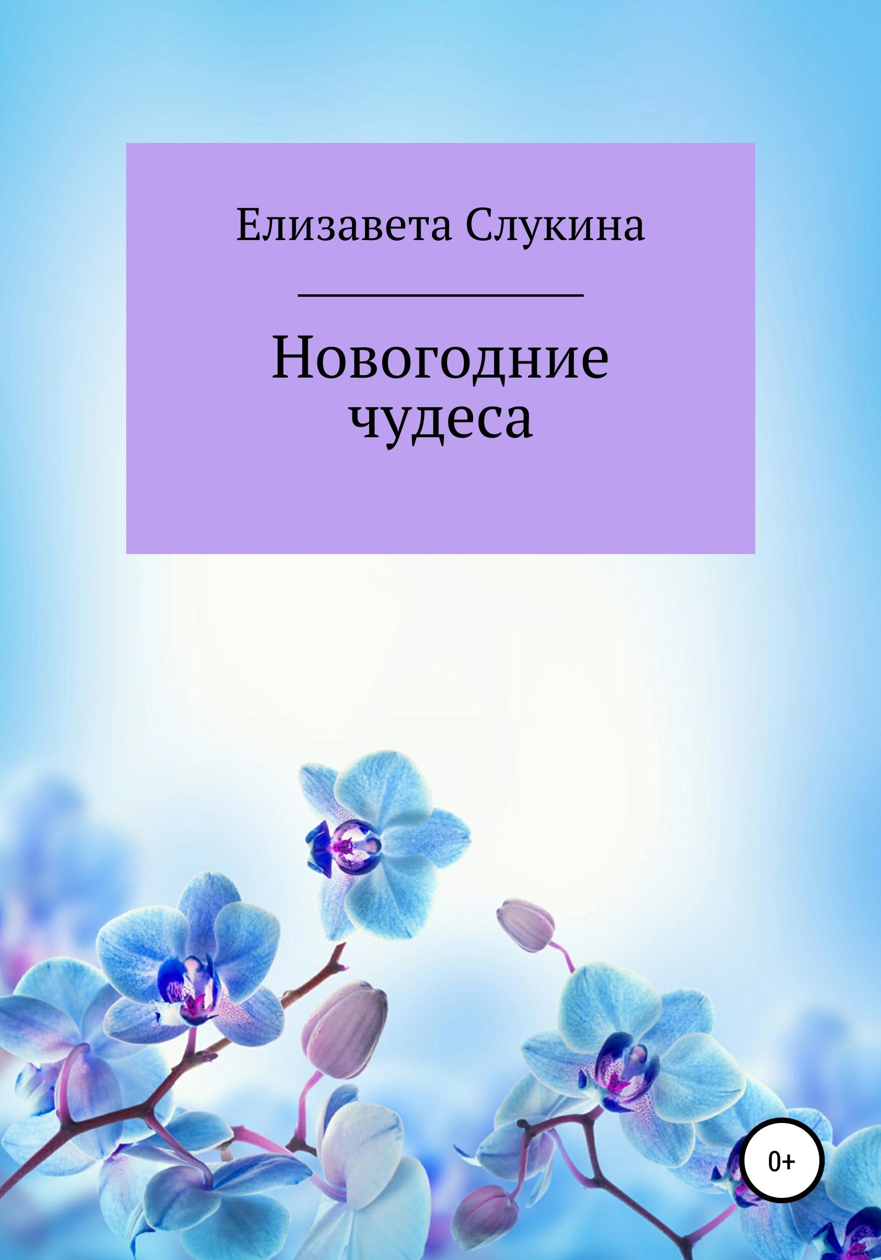 Купить книгу Новогодние чудеса, автора Елизаветы Юрьевны Слукиной