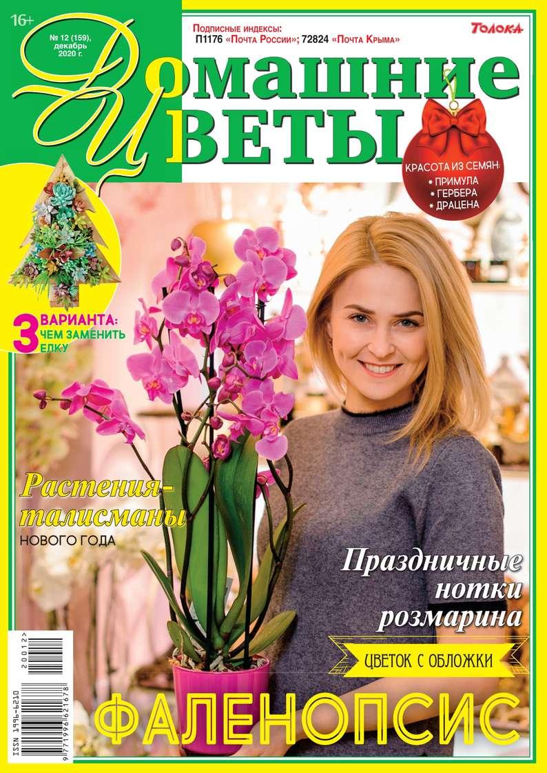 Купить книгу Домашние Цветы 12-2020, автора