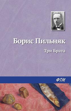 Борис Пильняк - Три Брата