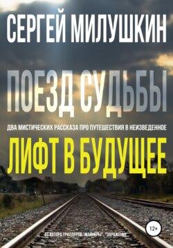 Сергей Милушкин - Лифт в будущее. Поезд судьбы