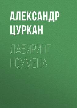 Александр Цуркан - Лабиринт ноумена