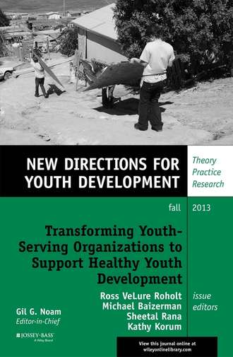 Купить Transforming Youth Serving Organizations to Support Healthy Youth Development. New Directions for Youth Development, Number 139