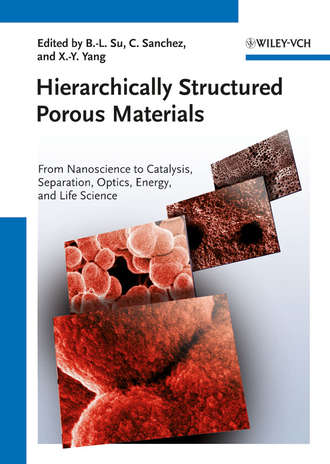 Купить Hierarchically Structured Porous Materials. From Nanoscience to Catalysis, Separation, Optics, Energy, and Life Science