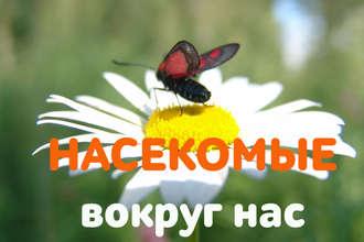 Аудиокнига Зачем тебе жужжать, если ты не пчела? Европейская символика образа