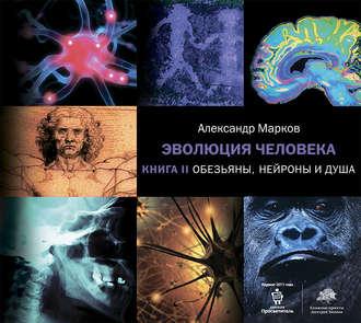 Аудиокнига Обезьяны, нейроны и душа