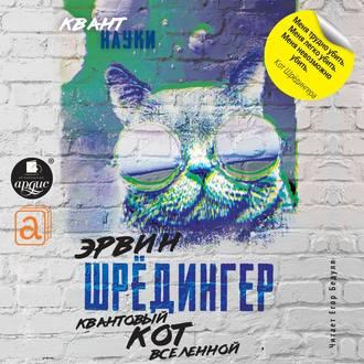 Аудиокнига Квантовый кот вселенной