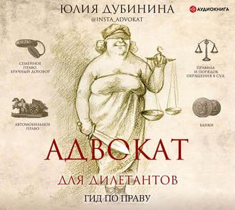 Аудиокнига Адвокат для дилетантов
