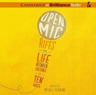 Аудиокнига Open Mic