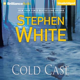 Аудиокнига Cold Case