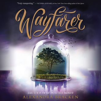Аудиокнига Wayfarer