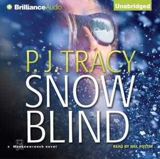 Аудиокнига Snow Blind