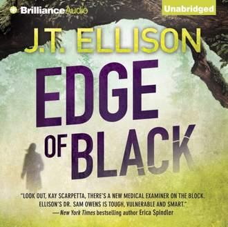 Аудиокнига Edge of Black
