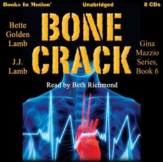 Аудиокнига Bone Crack (Gina Mazzio Series, Book 6)