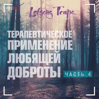 Аудиокнига Терапевтическое применение практики любящей доброты. Часть 4