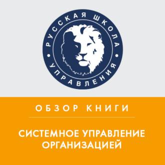 Аудиокнига Обзор книги С. Янга «Системное управление организацией»