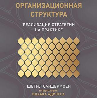 Аудиокнига Организационная структура
