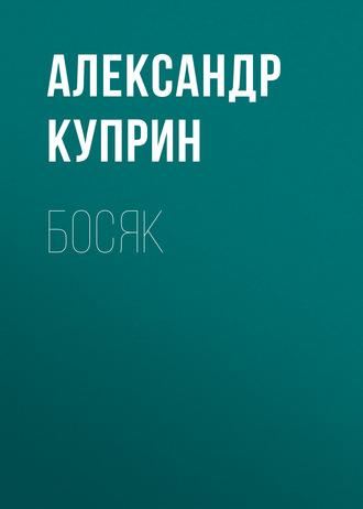 Аудиокнига Босяк