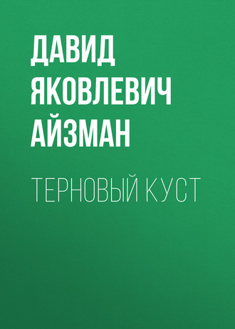 Аудиокнига Терновый куст