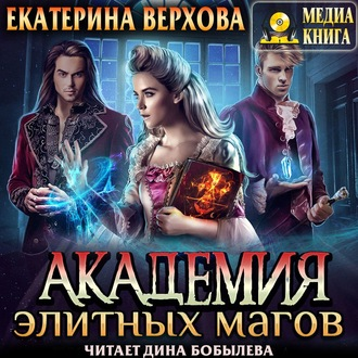 Аудиокнига Академия элитных магов