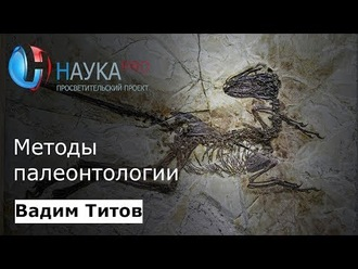 Аудиокнига Методы палеонтологии
