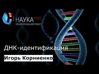 Аудиокнига ДНК-идентификация