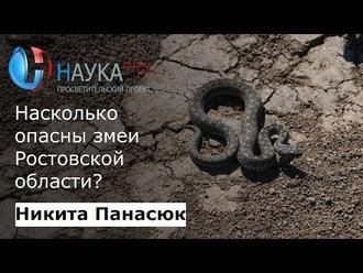 Аудиокнига Насколько опасны змеи Ростовской области