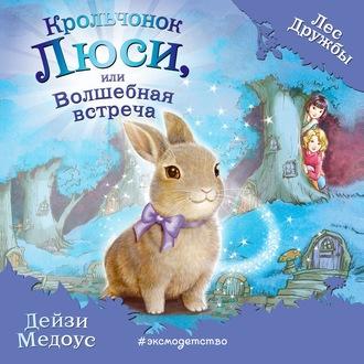 Аудиокнига Крольчонок Люси, или Волшебная встреча